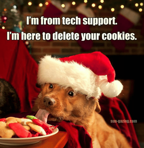 im-from-tech-support-im-here-to-delete-your-cookies-10025892.png